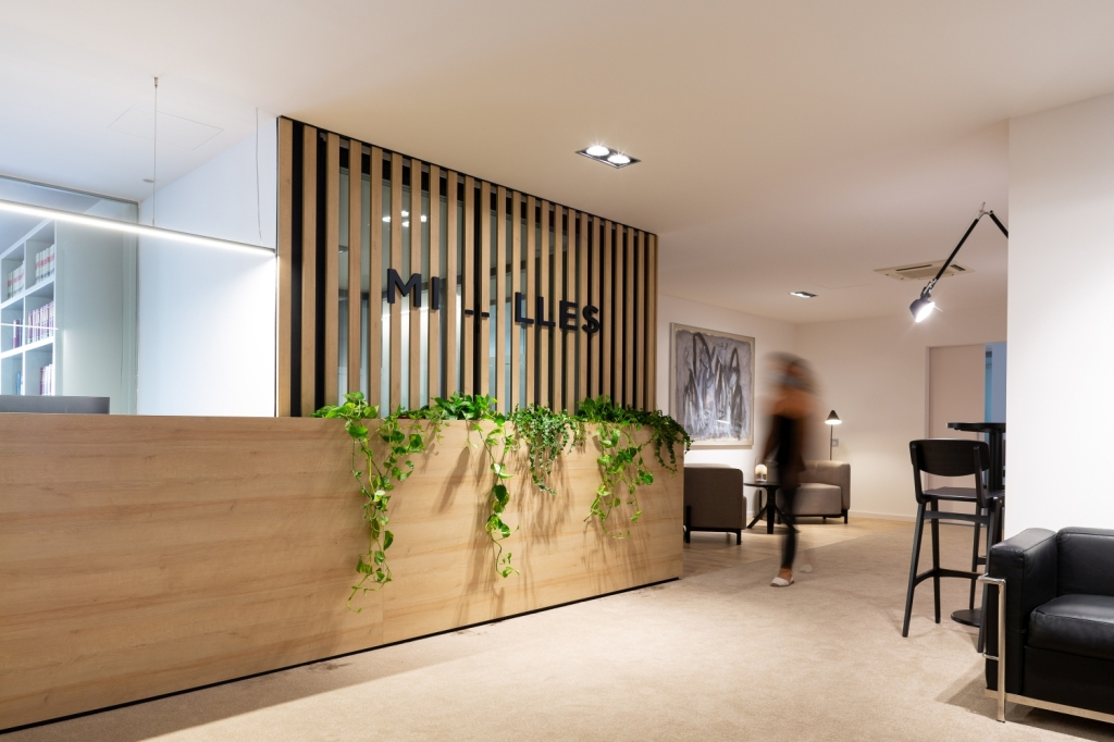 Mostrador oficinas con plantas preservadas